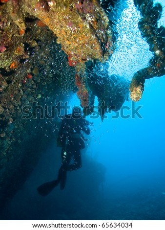 Diver by the wreck - stock photo