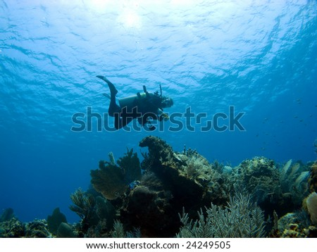 Diver descending on a Cayman Island Reef shot from below - stock photo