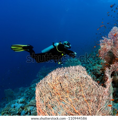 Diver next to a large sea fan deep underwater - stock photo