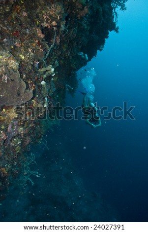 diver on underwater wall