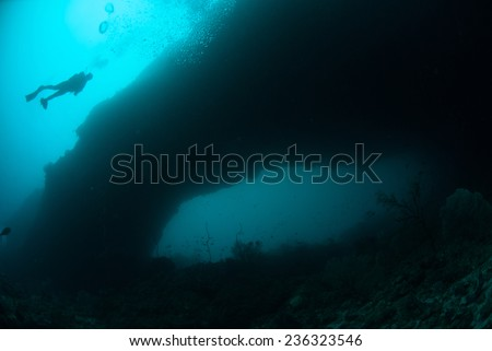 Diver swimming above in Ambon, Maluku, Indonesia underwater photo. Various coral reef in bottom of the sea.