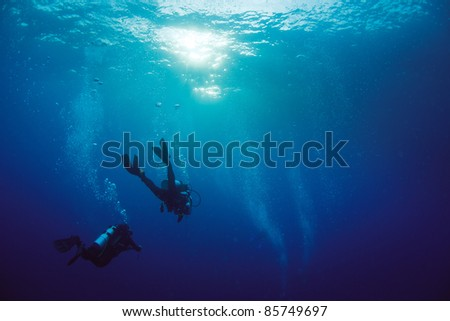 Diver swimming near surface - stock photo