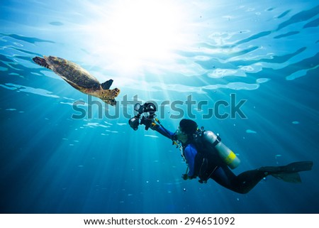 diver takes photo of sea turtle in the blue ocean - stock photo