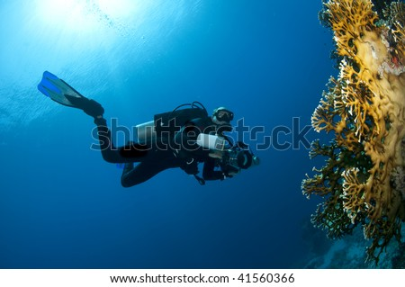 diver with camera - stock photo