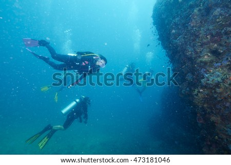 Divers and coral reef underwater with sea fish