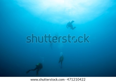 Divers go to the surface