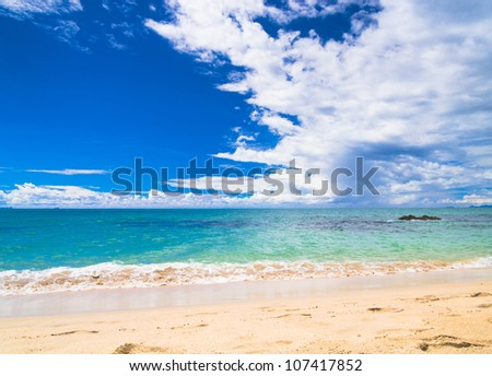 Divine Coastline On a Beach