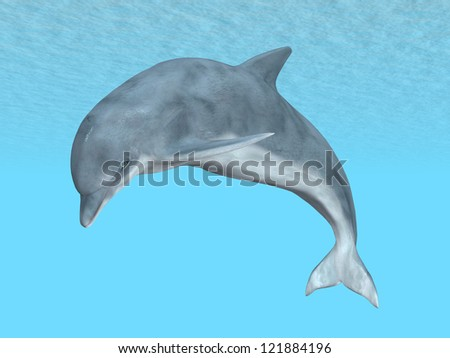 Diving Dolphin Computer generated 3D illustration - stock photo