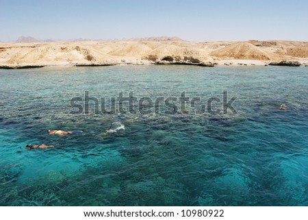 Diving in Egypt - stock photo