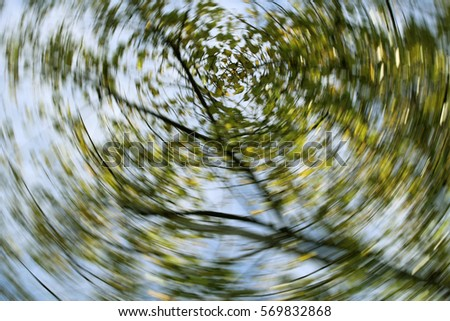 Dizzy, Abstract, Autumn, Blurred Motion, De focused/Autumn swirling trees