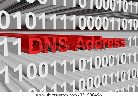 DNS Address is represented as a binary code
