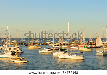 Docked sailboats in late afternoon - stock photo