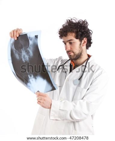 Doctor examining a x-ray image - stock photo