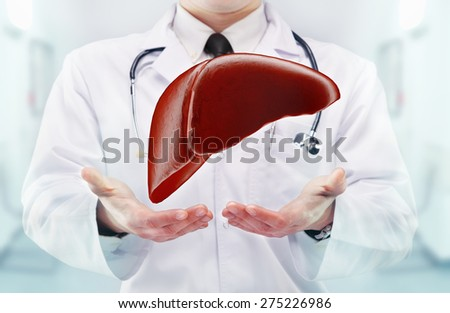 Doctor with stethoscope and liver on the  hands in a hospital. High resolution.  - stock photo