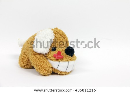dog a doll smiling