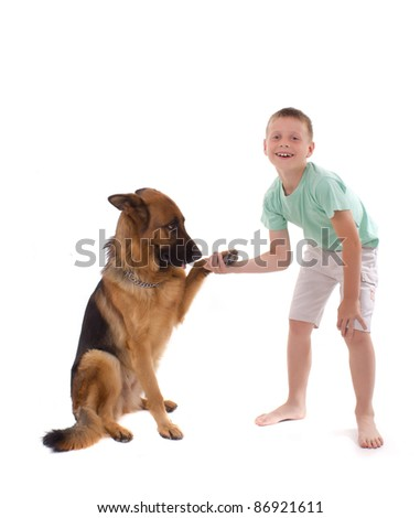 dog and boy are handled