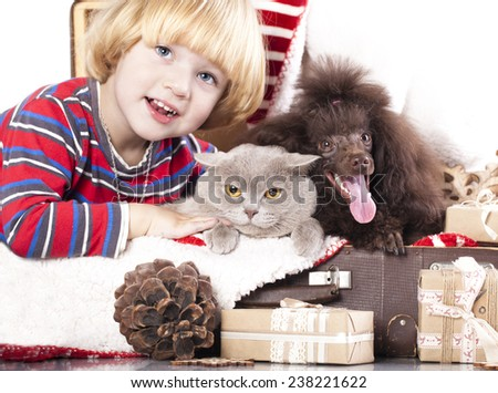 dog and cat and little boy - stock photo