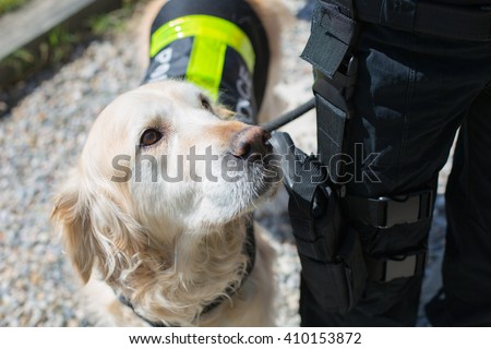 Dog and police officer with his gun and badge - stock photo