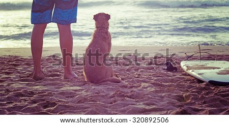 dog and surfer standing on the sand with a surfboard - stock photo