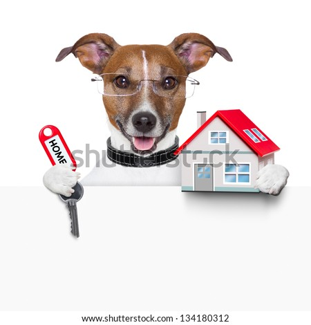 dog behind an empty placard with a small house and  home keys - stock photo