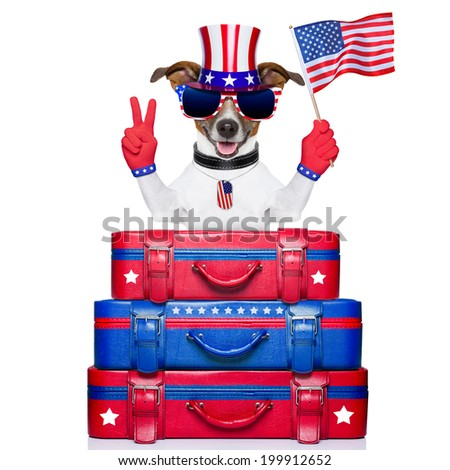 dog celebrating independence day  waving a flag with peace or victory fingers - stock photo