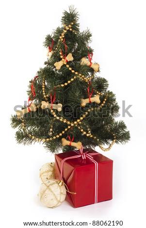 Dog christmas - stock photo