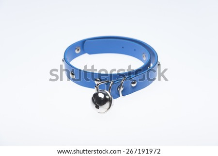 dog collar isolated - stock photo