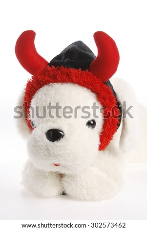 dog , doll , hat ,holloween, party, cute hat , fancy hat