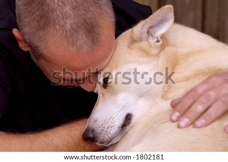 Dog enjoys being stroked - stock photo
