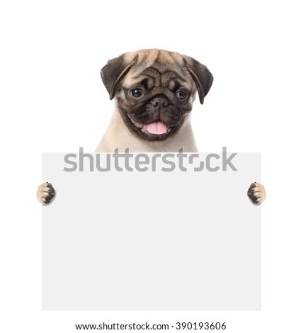 Dog holding a white banner. isolated on white background