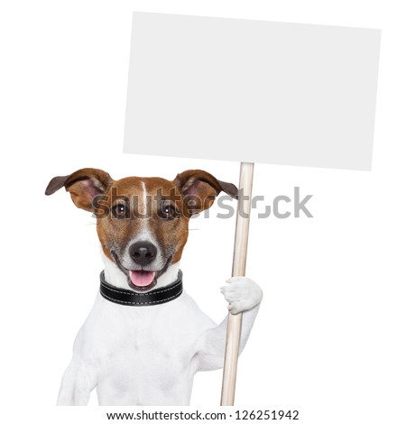 dog holding an empty placard and licking empty placard and smiling - stock photo