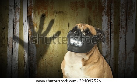 Dog in a scary mask with a digital background for halloween - stock photo