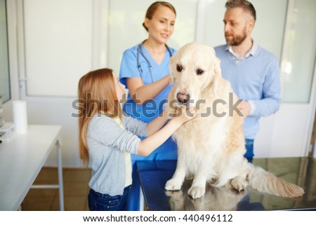 Dog in vet clinic