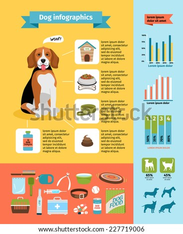dog infographics, dog food and kennel, veterinary and grooming, dog collar and dog shows - stock photo