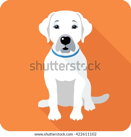 dog Labrador Retriever sitting icon flat design