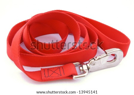 Dog Leash - stock photo