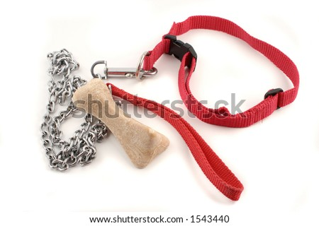 dog leash chain and dog buiscuit - stock photo