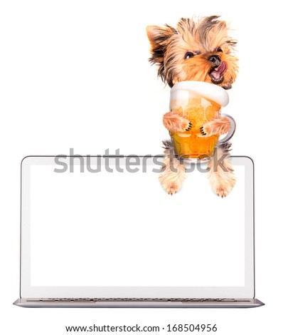 dog on computer with glass of beer - stock photo
