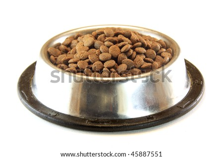 dog or cat food in a bowl - stock photo