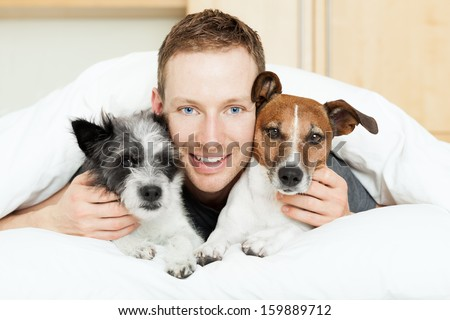 dog owner in bed with two cute dogs - stock photo
