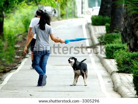 Dog preparing to attack stranger walkng by. - stock photo