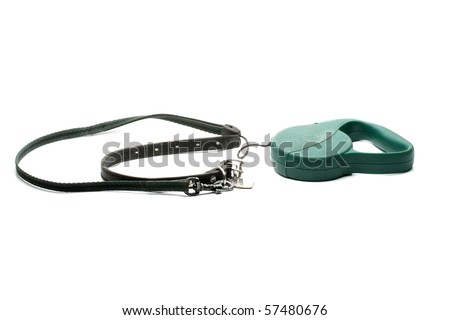 dog's collar and leash - stock photo