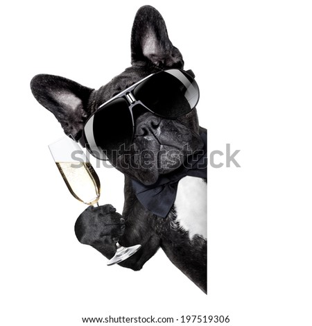 dog toasting behind white blank banner or placard - stock photo