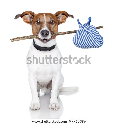 dog with a stick and a blue bag - stock photo