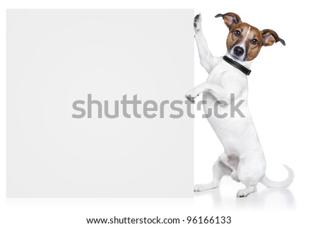 dog with banner white - stock photo