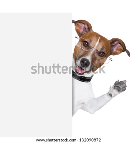 dog  with glasses behind a white banner waving