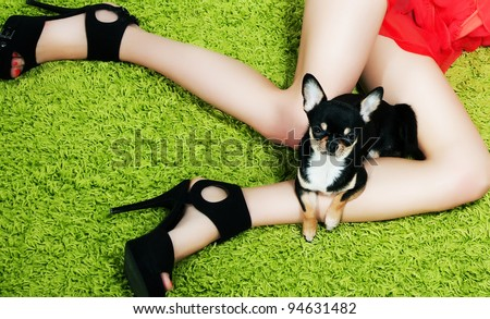 Dog with paws hugging over woman's legs that wearing  women black heeled shoes. Laying on green grass - stock photo