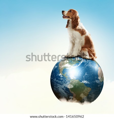 Dog with the Earth planet. Funny collage. Elements of this image are furnished by NASA - stock photo