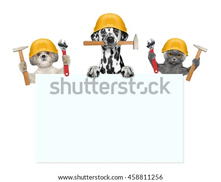 dogs and cat builders holding tools in their paws -- isolated on white