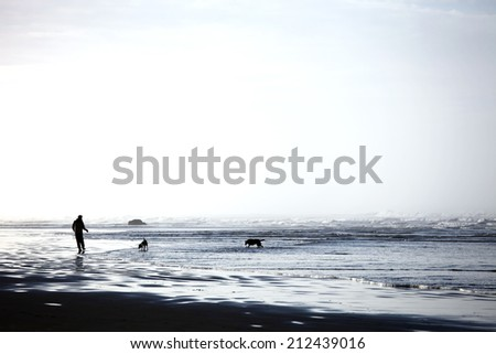 Dogs and owner playing along the ocean coast - stock photo